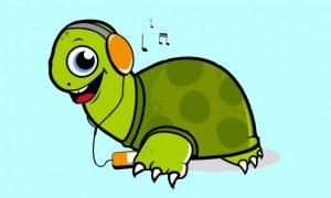 Las Tortugas oyen