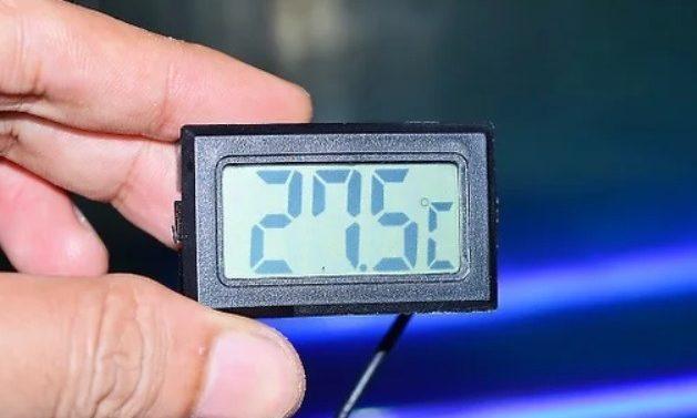 termómetro para tortugas
